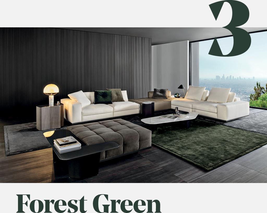 3. Forrest Green