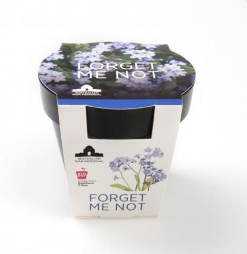3.	Seeds – Grow-your-own seedling kit: Forget-me-not  $12.99
